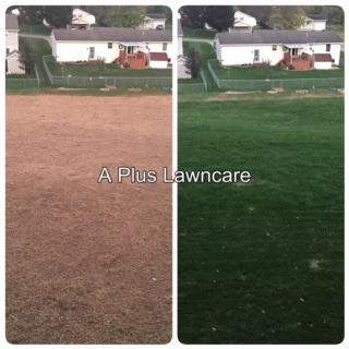 A Plus Lawn Pros Lawn Seeding Project.JPG