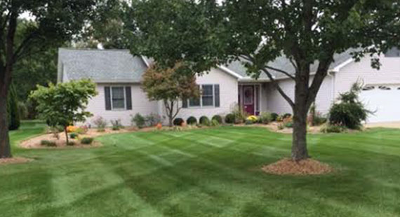 A Plus Lawncare Landscaping Services Landscaping