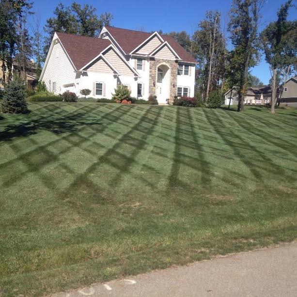A Residential Commercial Mowing Services 3