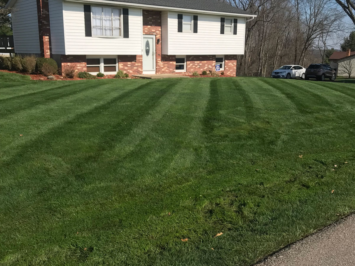 Aplus Lawncare Landscaping Yard Mowing