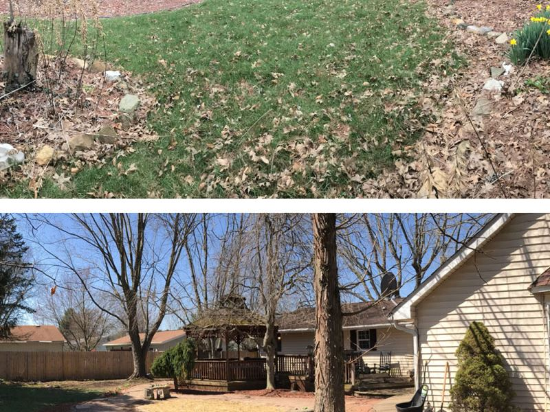 A+ Lawncare & Landscaping - Lawn Cleanup Services Near Me