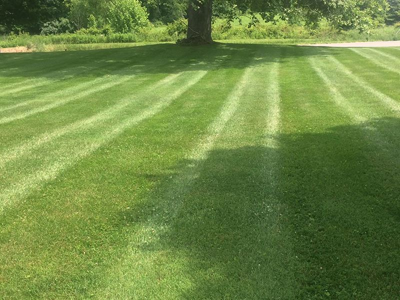 A+ Lawncare & Landscaping - Mowing Services Near Me