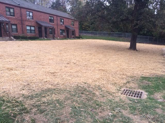 A+ Lawncare & Landscaping - Lawn Seeding Services Near Me